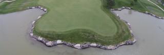Golfing pic